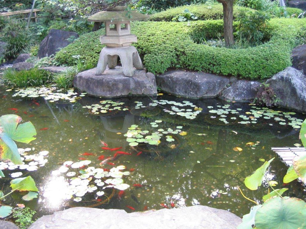 Una voce dal giappone visita al tempio della dea kannon for Laghetto giapponese