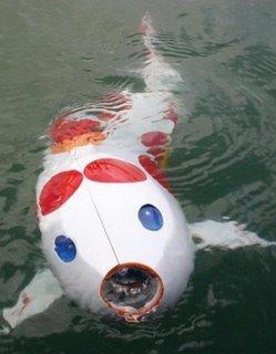 robotic carp
