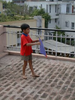 kite flying fighting india line spool manjha patang dor tukal independence day