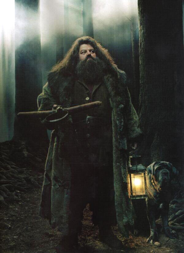 ... Blutjager's Guide to Harry Potter: Character Analysis: Rubeus Hagrid
