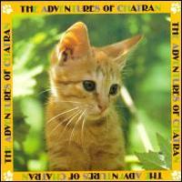El gato Chatran