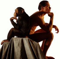 Culture Dish: Ancient Tattooed Women and Humans Mating with Primates