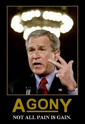 Bush Pain