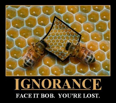 Demotivational Poster Ignorance