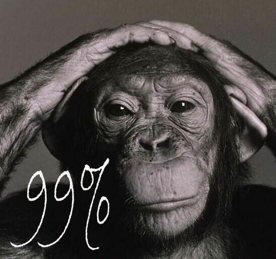 The active genetic material of chimpanzees is 99% identical to that of humans. I have met people who were less than 99% human.