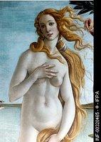 S. Botticelli