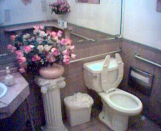 Unexpectedly clean toilet and more flowers in the Mobil bathroom.