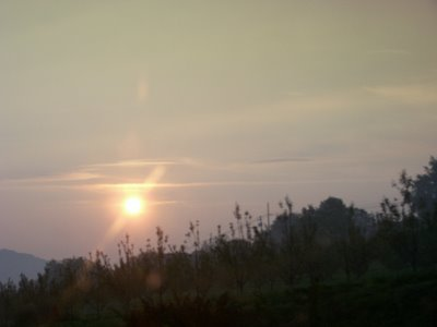 The sun rises through the haze as I drive to work.