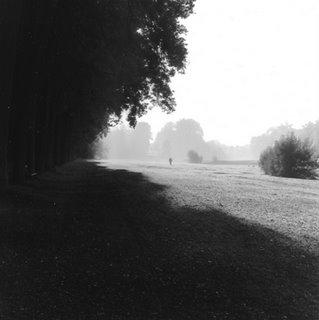 Au parc de Tervuren