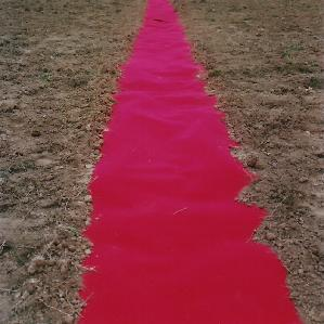 Etrange tapis dans les champs d'Ottignies... pour acceuillir quelle star venue des étoiles?