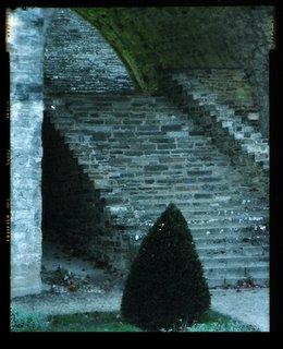 Dans les ruines de l'Abbaye de Villers la Ville