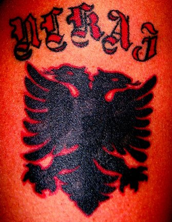 Of Comments On SHQIPONJA TATUAZH ALBANIAN EAGLE TATTOO YouTube