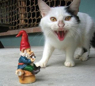 cat vs travelocity gnome Travelocity soon to let you book travel using points and miles