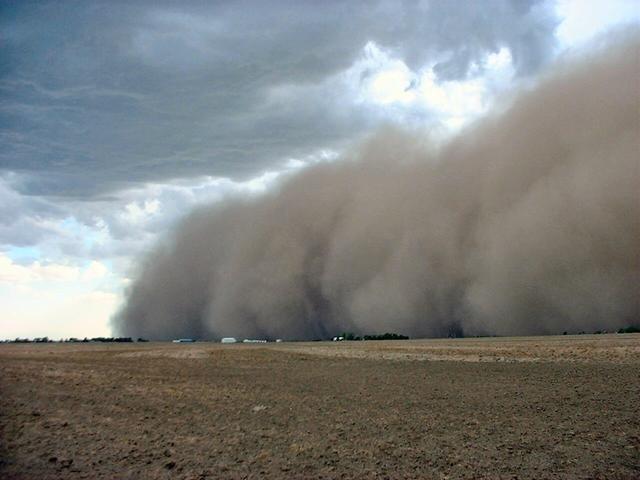 МСЧ предупреждает опыльной буре вСаратовской области