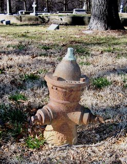 Fire Hydrant in Calvary Cemetery, St. Louis, MO