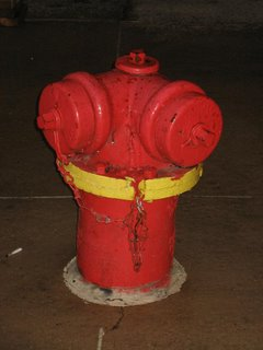 Red Fire Hydrant in Chicago, IL