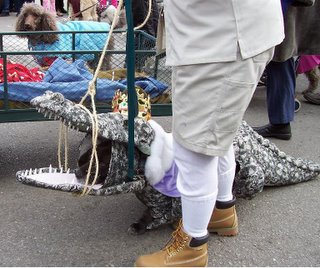 Dog in alligator costume