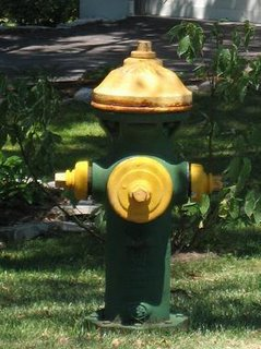 Green and Yellow Fire Hydrant