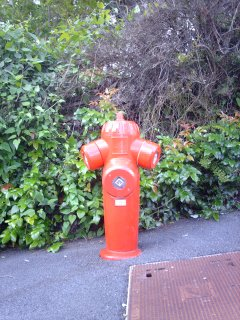 Red Fire Hydrant in France