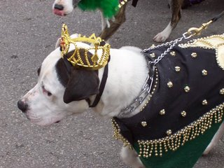 Dog with crown on his head wearing regal clothes