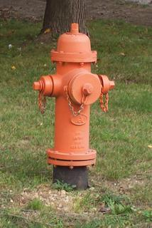 Fire Hydrant in Louisiana, Missouri