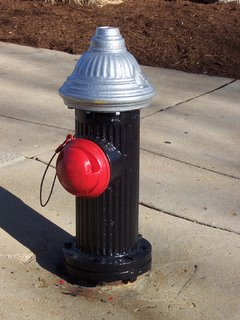 Fire hydrant with red tamper resistant cap of the hose connection