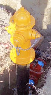 Recently installed fire hydrant with pipes and underground cutoff valve showing in open trench.