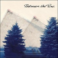 Between The Pine: Free MP3 downloads