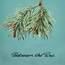 Between The Pine: free mp3s available below