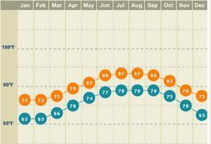 miami weather in november