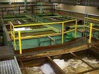 Water Treatment Facilities Surveillance