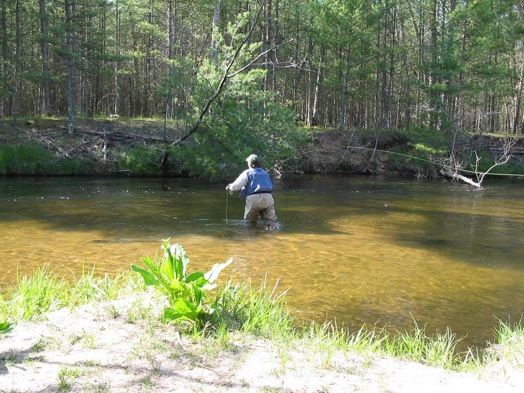 Science and sarcasm pere marquette river fishing report for Pere marquette river fishing report