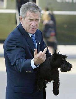 Bush dislikes you