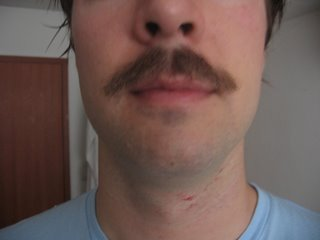 how to get rid of my moustache