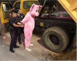 Peta activist dressed as pig arrested