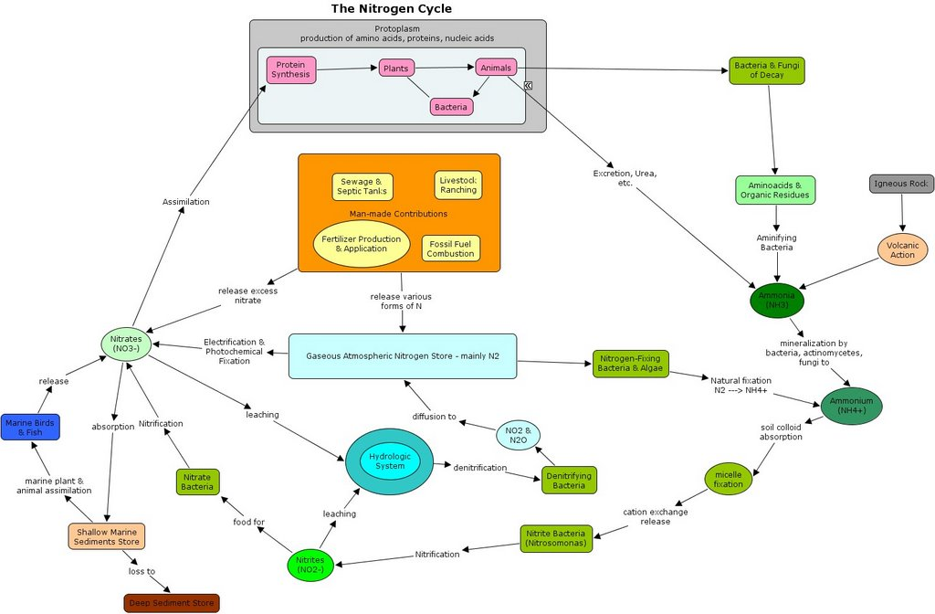 Knowledge Mapping Selecting Generic Concept Mapping Software
