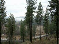 Hangman Valley