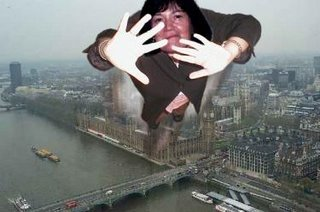 Is it a bird? Is it a plane? No, it's ... the MP for Birmingham Ladywood