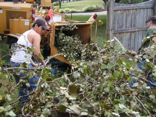The branches were fed to the chipper that quickly reduced the pile to chips in the truck.