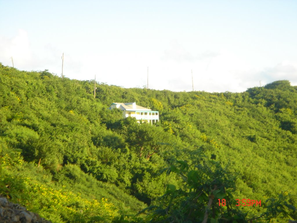 Rainy Season In Caribbean: Monsoon Months