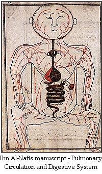 decouverte de la circulation sanguine