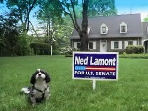 Lamont ad 2