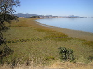View of San Pablo Bay - click for larger view