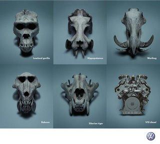 Evoluzione Volkswagen