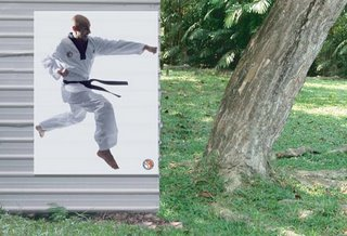 Taekwondo advertising