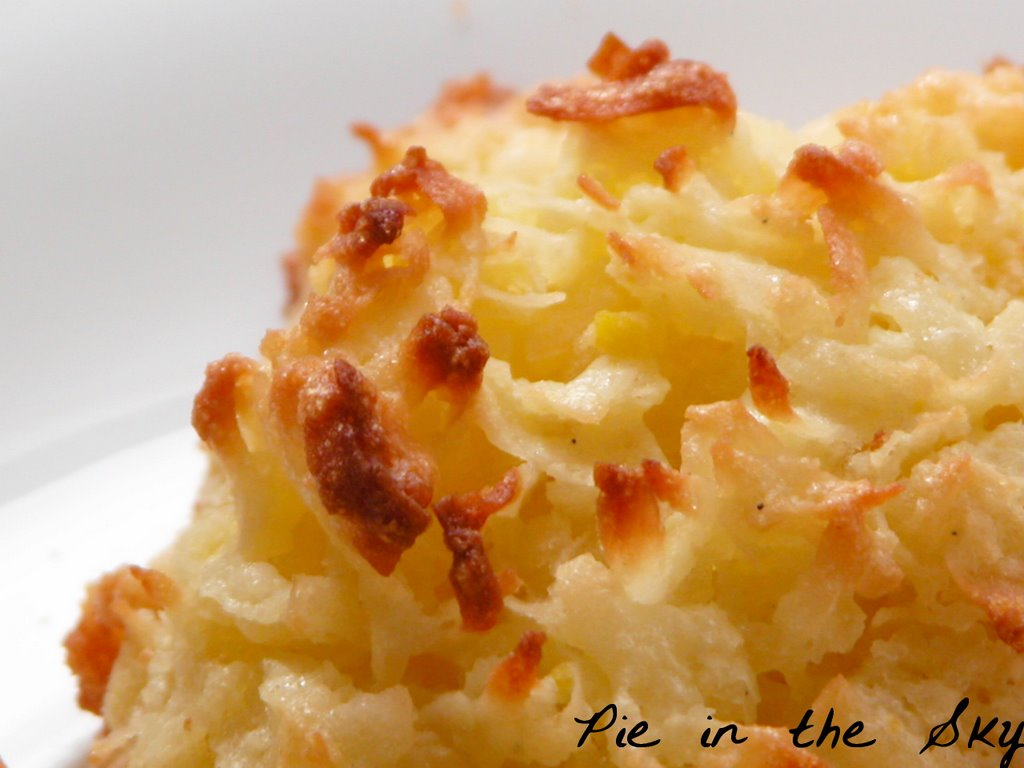 how to make coconut macaroons using oven toaster