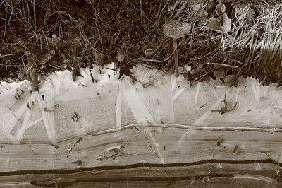 ice age, bord du canal de l'ourthe gelé, liège, belgique, photo dominique houcmant, goldo graphisme