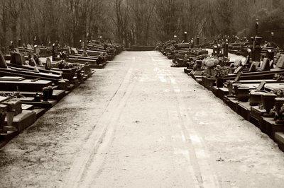 cimetière d'ougrée, belgique, allée, cemetery, photo dominique houcmant, goldo graphisme