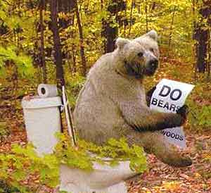 Do Bears Shit In The Woods?
