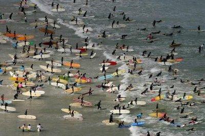 photo de surf 946